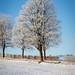 2016_01_20 Differdange neige