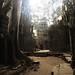 Ta Prohn, Angkor, Cambodia