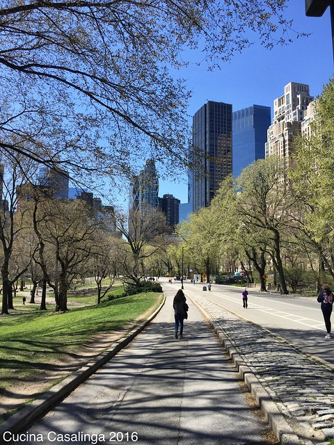 2016 04 15 052 Central Park CuCa