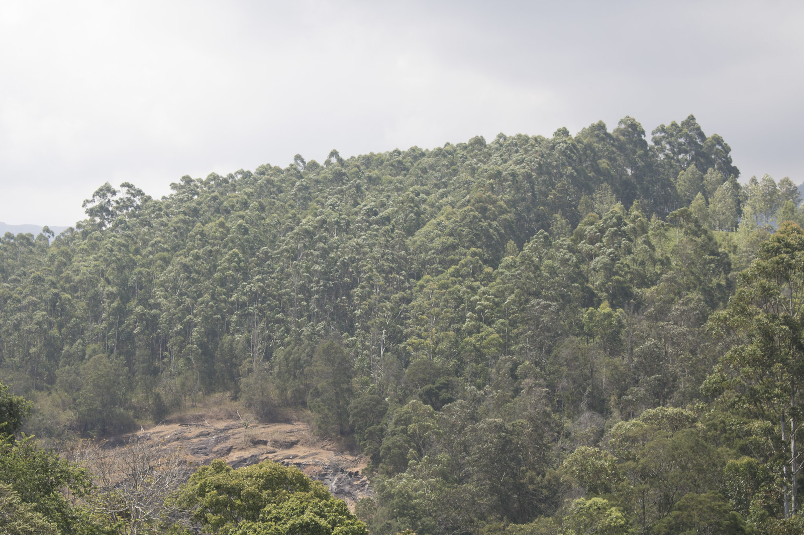 Kundala Dam (4)