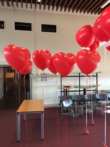 Heliumballonnen Hart Hoge School Rotterdam