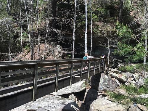 Bridge near Dog Slaughter Falls
