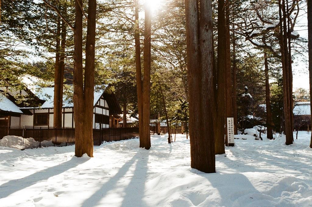 北海道神宮 Japan / Kodak ColorPlus / Nikon FM2 北海道神宮,一直走著,一直聽著踏雪的聲音,兩旁的樹林陰影就這樣落在雪地上。  太過新鮮的畫面,所以一直拍個不停。  Nikon FM2 Nikon AI AF Nikkor 35mm F/2D Kodak ColorPlus ISO200 8265-0004 2016/02/01 Photo by Toomore