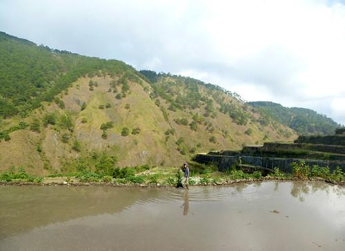 P16-Luzon-Bontoc-Banaue-route(29)