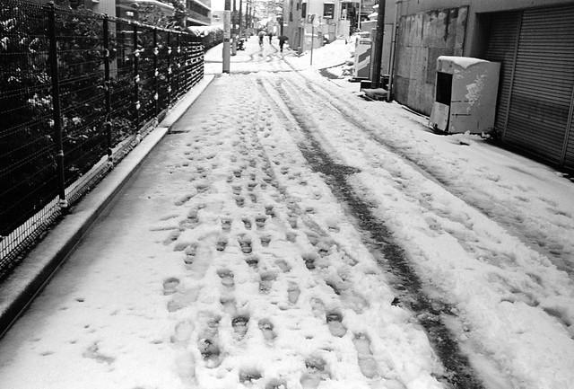 雪のあしあと