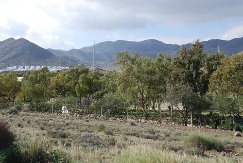 Paisajes San José