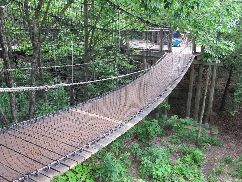 Hanging wooden bridge