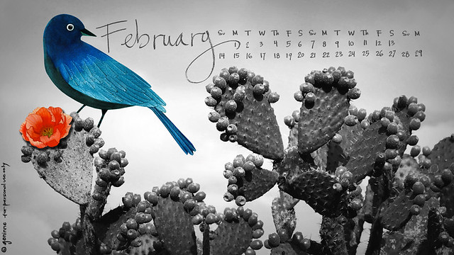 Febrero!