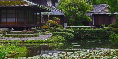 japan garden tea kumamoto kyushu yatsushiro