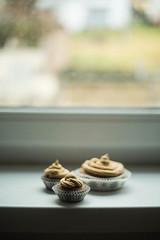 283-366 Cupcakes.jpg