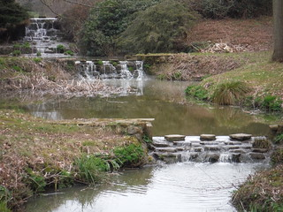 Outflow of ponds by Newplace Farm, close-up