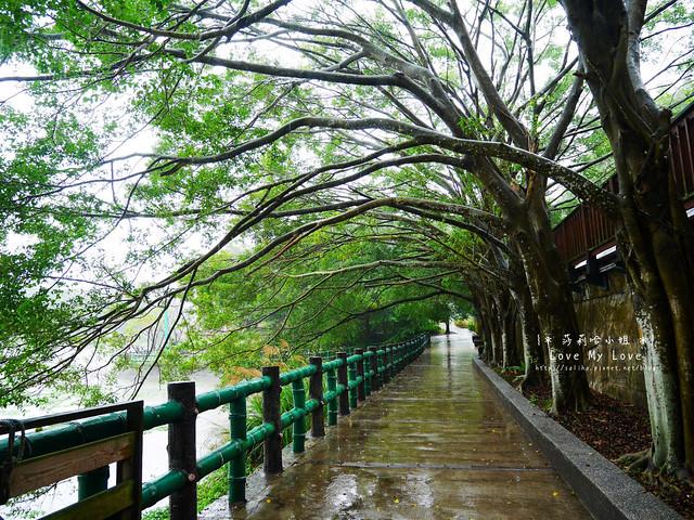 新竹一日遊景點青草湖 (25)