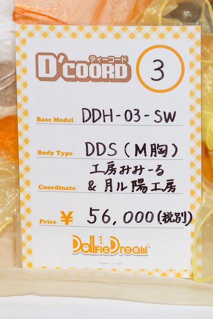 HTドルパ京都13 DDH-03