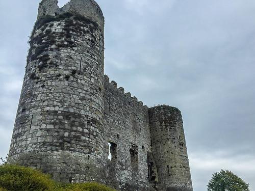 Carlow Castle photo