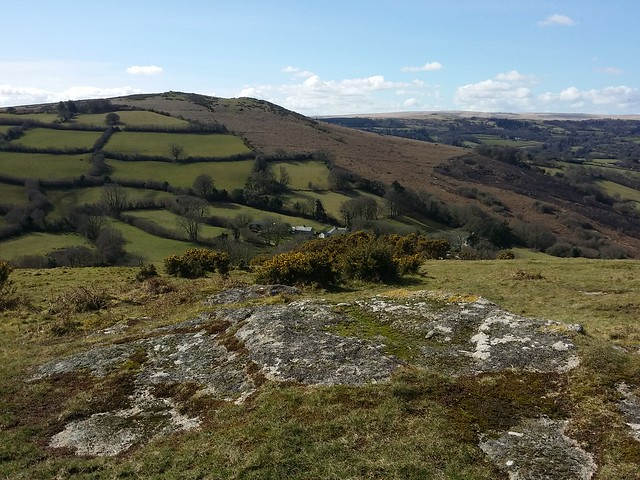 Meldon Hill, from Nattadon Common