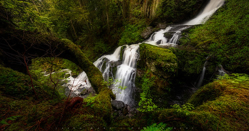 morning water vancouver river rocks steelheadfalls jasondarr