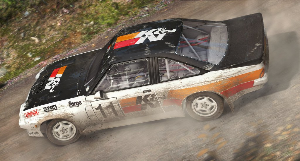 Dirt Rally on PS4