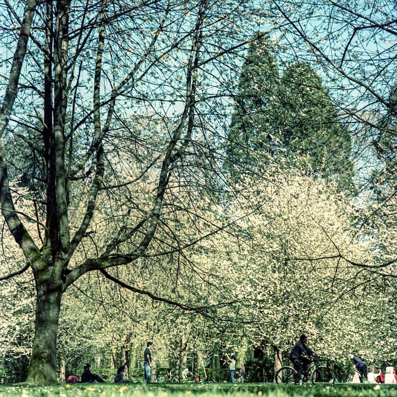 Belle lumière de printemps_