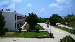 جامعة تشرين