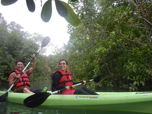 Mangrove Kayaking Expedition with Adventures by Asian Detours