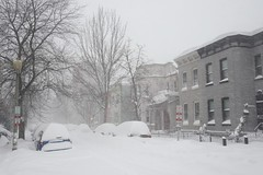 Saturday Snow 18