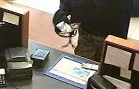 Conversano- ladri rapinano la banca