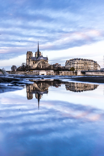 Reflections, Notre-Dame