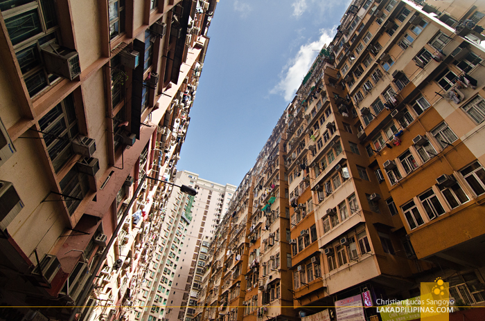 Hong Kong Walk Hum Hong