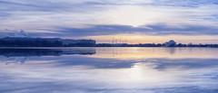 Potomac Dawn
