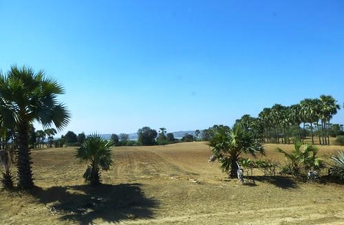 M16-Magway-Bagan-route (26)