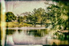 Messing around with some new editing software. This is a shot I took at Woodlawn Lake Park   #woodlawnlake #park #sanantonio #lake #nikcollection #landscape #amateurphotographer #nikon #nikonlove #igsanantonio #picoftheday #photography #photooftheday #ins