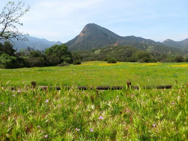 mountain spring above malibu