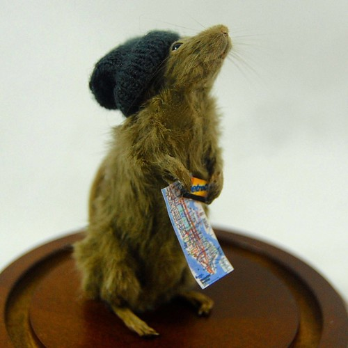 anthropomorphic taxidermy mouse lost in new york subway map metro card