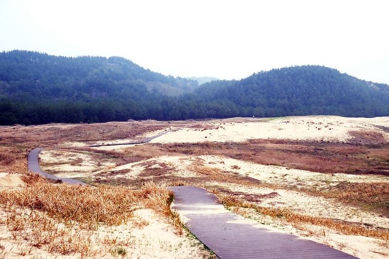 Sinduri Dune, Taeanhaean National Park