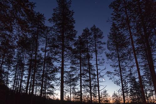 sunshine amanecer finlandia laponia