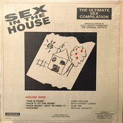 V.A.:SEX INTHE HOUSE:SEX INTH HOOD(JACKET A)