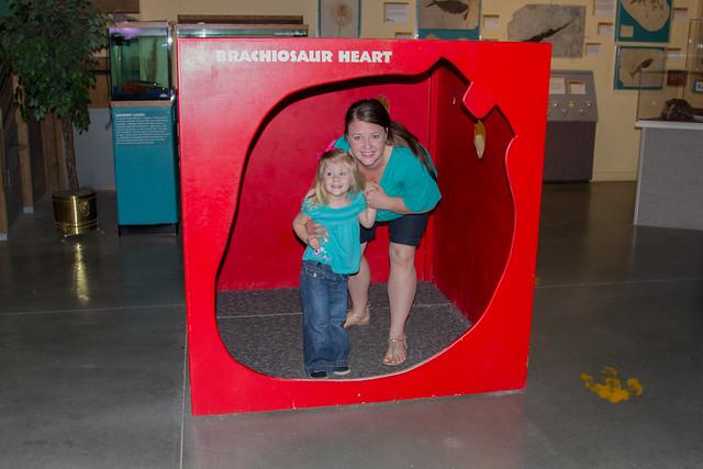 Brachiosaur Heart