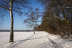 Winter eingefangen