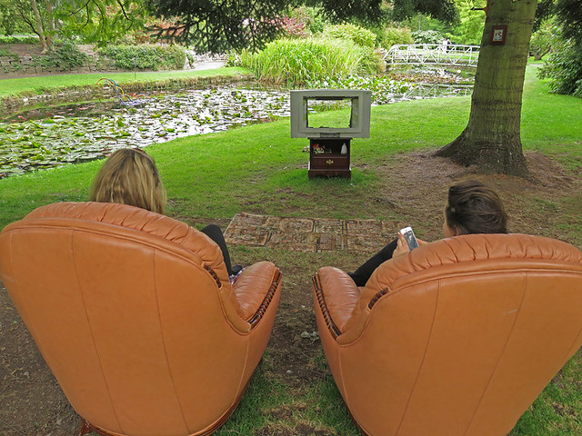 Dublin Botanical Garden TV 'Sculpture'