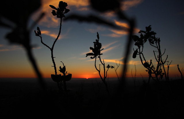 Hissing Hills