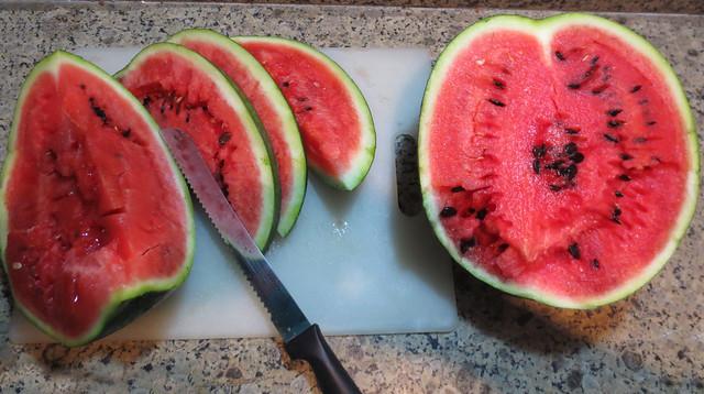 Watermelon-2016-2
