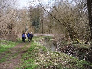 Beside the Flit River, Flitwick Moor