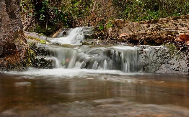 Parque Medioambiental de Gualba (Montseny)
