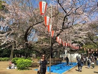 Japan - Ueno (Cherry Blossoms)