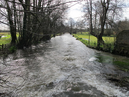 An Arm of the Test River, by bridge outside Mottisfont Abbey Gardens