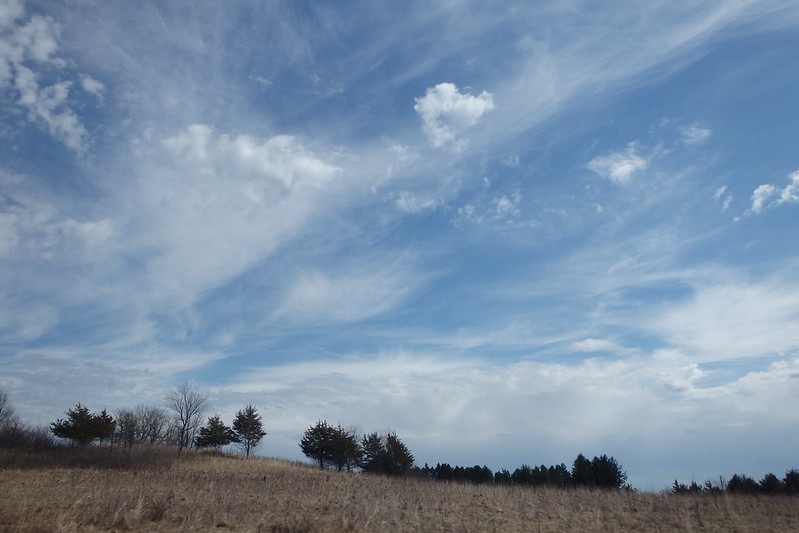 wispy clouds in a bright blue sky, with a short foreground of grasses and trees in the distance
