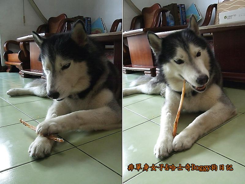 哈士奇Doggy愛狗零食09