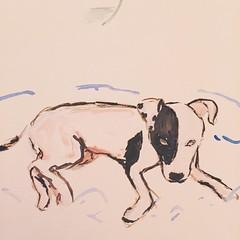 12/100. My dog Frida. First layers.