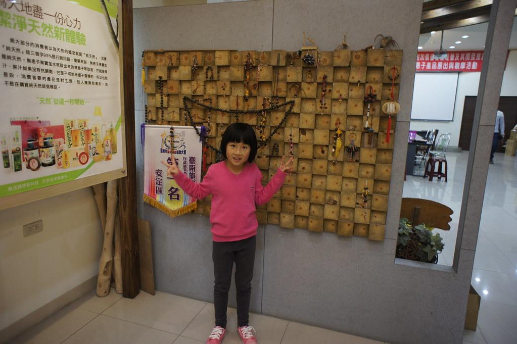 台南市安定區古寶無患子 (40)