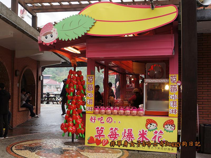 苗栗草莓大湖酒莊清安洗水坑豆腐街16